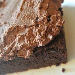Coconut Flour Brownies. Paleo brownies with no refined sugar, and gluten free! From Fit Mom Journey!
