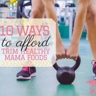 How To Afford Trim Healthy Mama Foods – 10 Tips!