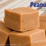 Peanut Butter Fudge THM:S