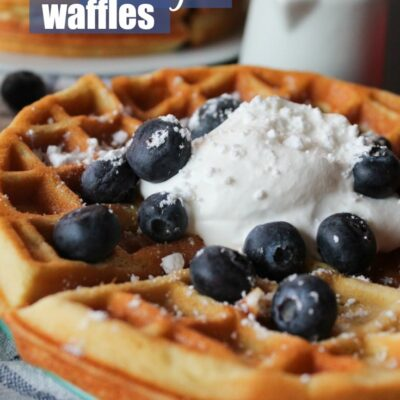 These Keto Waffles are 2.9 net carbs each, 28 grams of protein, and are crispy and delicious! Even my 6 year old daughter was fooled by my Keto Waffles!